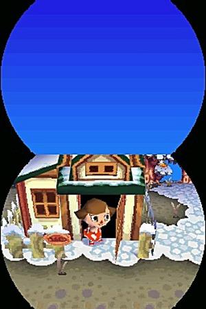 Animal Crossing Wild World Ancrds546