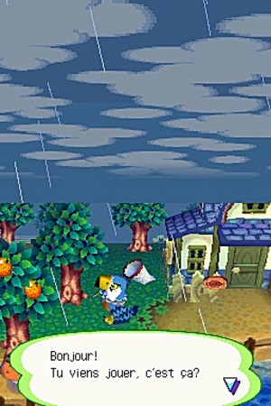 Animal Crossing Wild World Ancrds568