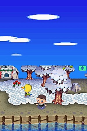 Animal Crossing Wild World Ancrds630