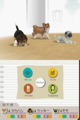 Nintendogs : Labrador & ses Amis