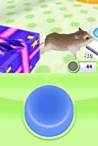jeuxvideo.com Petz : Hamsterz Superstarz - Nintendo DS Image 6 sur 6