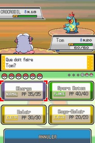 Test Pokémon Version Argent : Soulsilver Nintendo DS - Screenshot 207