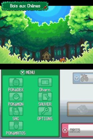 Test Pokémon Version Argent : Soulsilver Nintendo DS - Screenshot 212