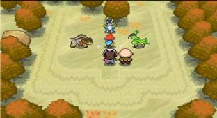 Pokémon Version Blanche DS - Screenshot