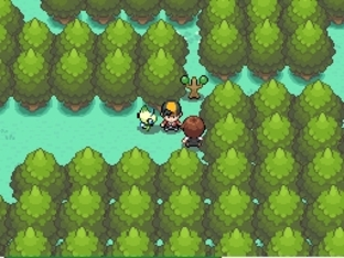 Pokémon Version Or : HeartGold DS - Screenshot 415