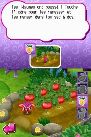 zoobles-spring-to-life-nintendo-ds-1322584214-006_m.jpg