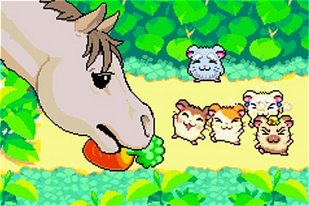 Images Hamtaro : Rainbow Rescue Gameboy Advance - 13
