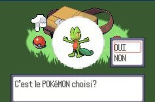 Test Pokemon Rubis Gameboy Advance - Screenshot 16