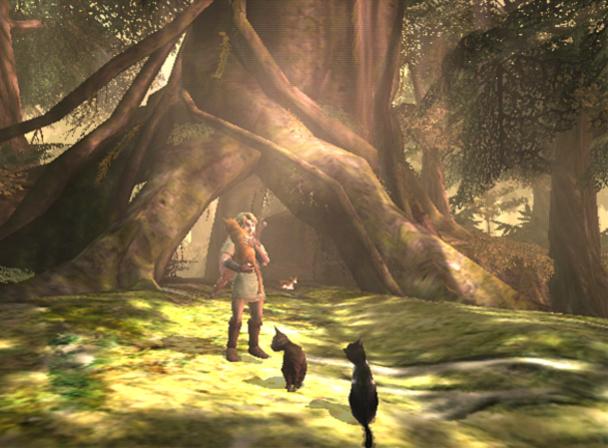 The Legend of Zelda : Twilight Princess Tlozgc015