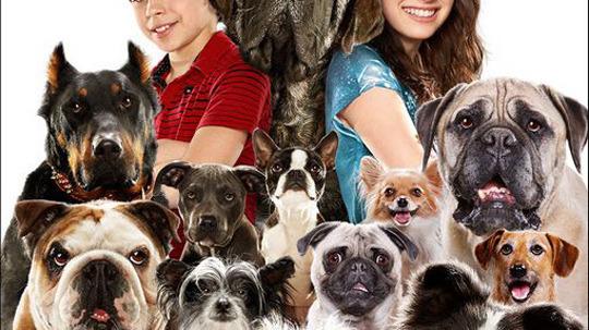 Palace pour chiens adapt en jeu vid o actualit s for Hotels qui acceptent les chiens