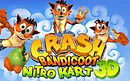 Jaquette Crash Bandicoot Nitro Kart 3D - iPhone/iPod