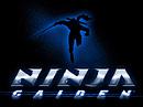 Images Ninja Gaiden Nintendo 3DS - 0
