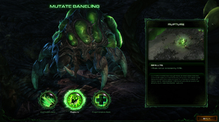 Aperçu Starcraft II : Heart of the Swarm Mac - Screenshot 163