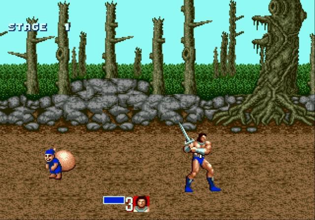 MEGADRIVE vs SUPER NINTENDO : Fight ! Goldmg013