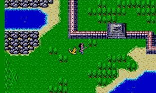 Test Phantasy Star Master System - Screenshot 14