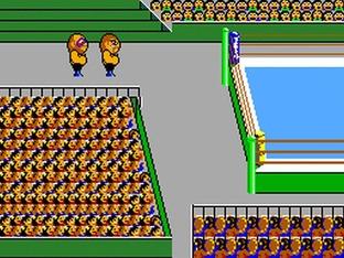 Images Pro Wrestling Master System - 1