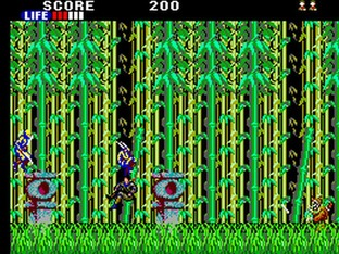 Test Shinobi Master System - Screenshot 2