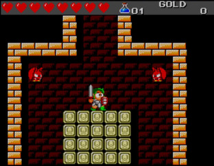 Test Wonder Boy III : The Dragon's Trap Master System - Screenshot 13