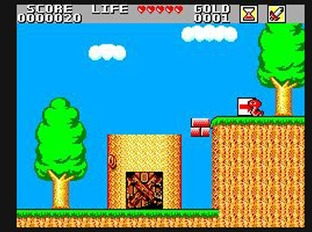 Test Wonder Boy in Monster Land Master System - Screenshot 11