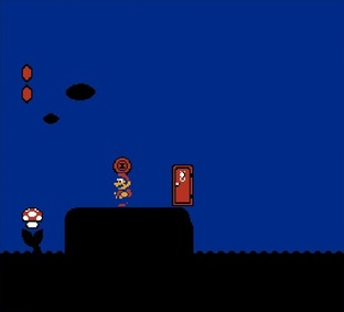 Test Super Mario Bros. 2 Nes - Screenshot 19