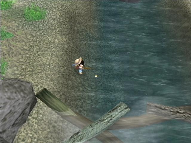 Harvest Fishing