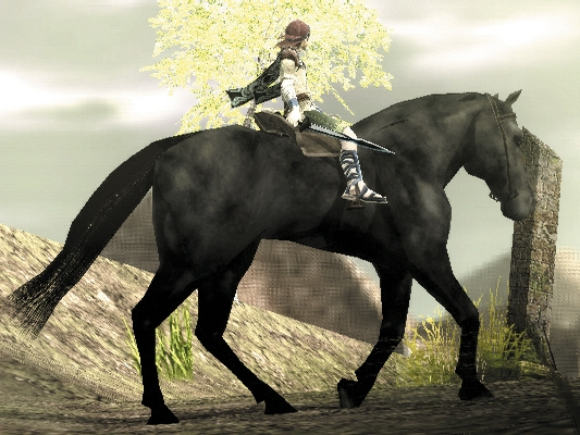[Ps2] Shadow Of The Colossus Wandp2031