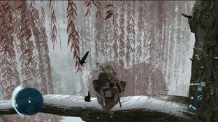 http://image.jeuxvideo.com/images/p3/a/s/assassin-s-creed-iii-la-tyrannie-du-roi-washington-episode-1-deshonneur-playstation-3-ps3-1361551129-013_m.jpg