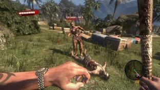 http://image.jeuxvideo.com/images/p3/d/e/dead-island-playstation-3-ps3-1315576778-082_m.jpg