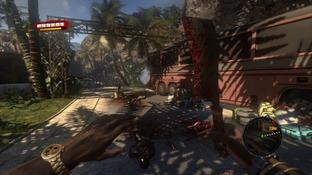 http://image.jeuxvideo.com/images/p3/d/e/dead-island-playstation-3-ps3-1315576778-084_m.jpg