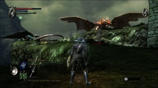 http://image.jeuxvideo.com/images/p3/d/e/demon-s-souls-playstation-3-ps3-319_m.jpg