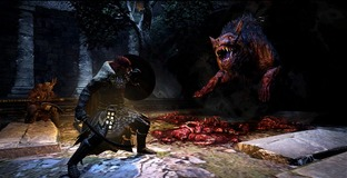 Images de Dragon's Dogma : Dark Arisen