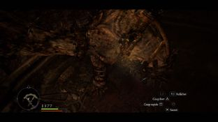 Test Dragon's Dogma : Dark Arisen PlayStation 3 - Screenshot 55