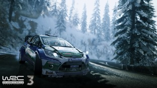 Aperçu WRC 3 - GC 2012 PlayStation 3 - Screenshot 7