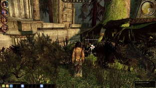Dragon Age : Origins PC - Screenshot 2038