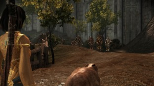 Dragon Age : Origins PC - Screenshot 2057