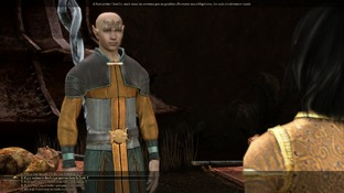 Dragon Age : Origins PC - Screenshot 2095