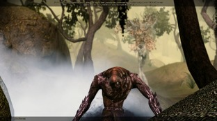 Dragon Age : Origins PC - Screenshot 2100