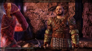 Dragon Age : Origins PC - Screenshot 2147