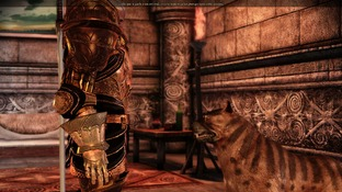 Dragon Age : Origins PC - Screenshot 2192