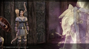 Dragon Age : Origins PC - Screenshot 2197