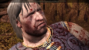 Dragon Age : Origins PC - Screenshot 2230