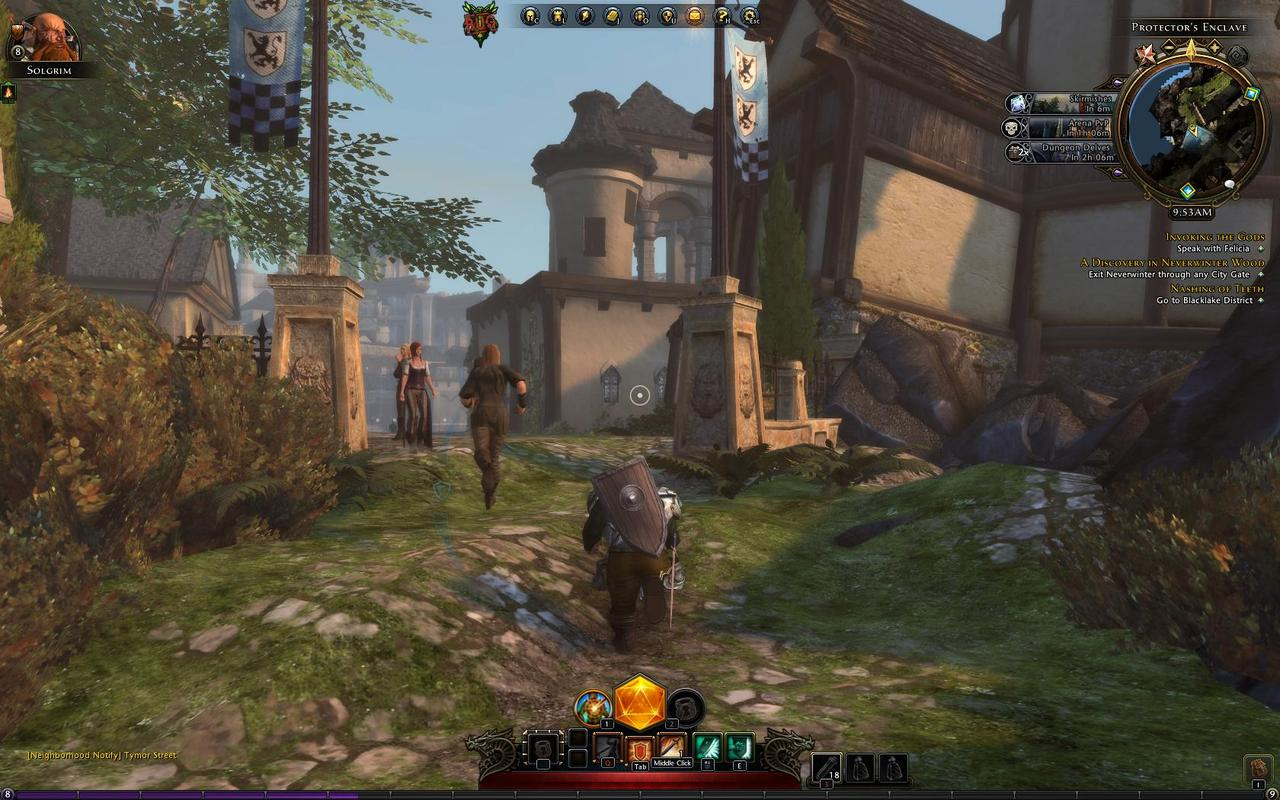 Images Dungeons & Dragons : Neverwinter PC - 316