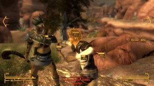 Test Fallout New Vegas : Honest Hearts PC - Screenshot 20