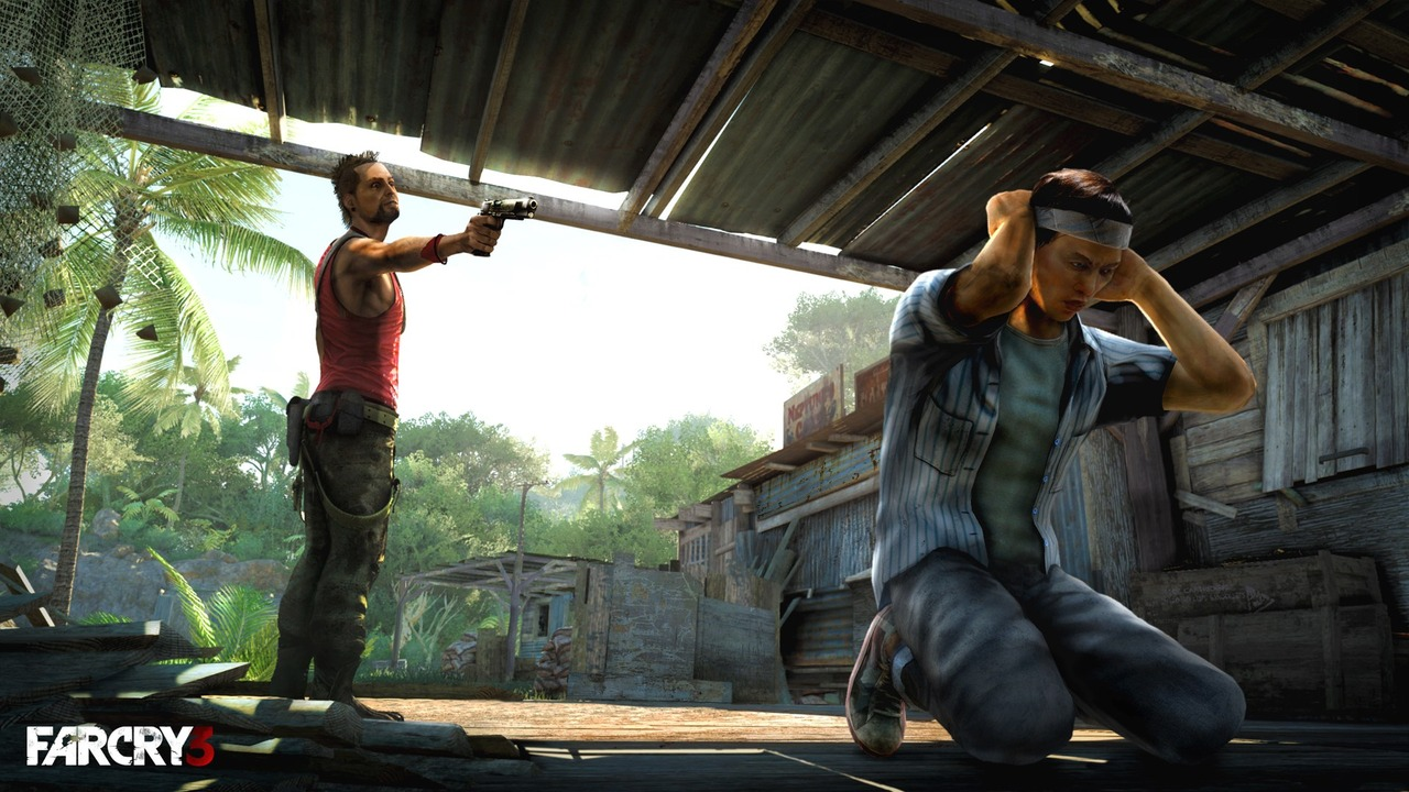 Images Far Cry 3 PC - 12