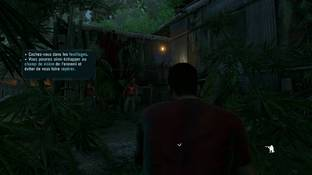 Far Cry 3 PC - Screenshot 450