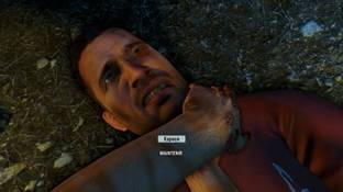 Far Cry 3 PC - Screenshot 451