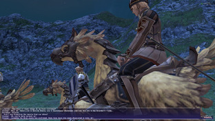 Final Fantasy XI Online PC - Screenshot 463