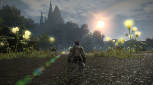 Final Fantasy XIV A Realm Reborn : Une date et une Edition Collector