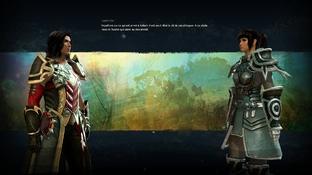 Test Guild Wars 2 PC - Screenshot 381