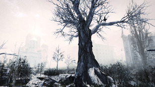 Images Metro : Last Light PC - 10